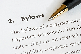 owner-benefits-bylaws